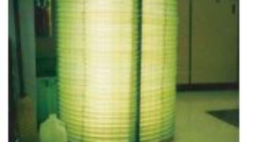 Production de biocarburants à partir d'algues