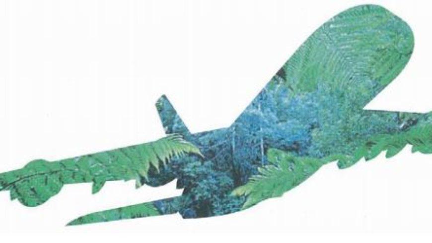 Vue sur les perspectives du transport aérien